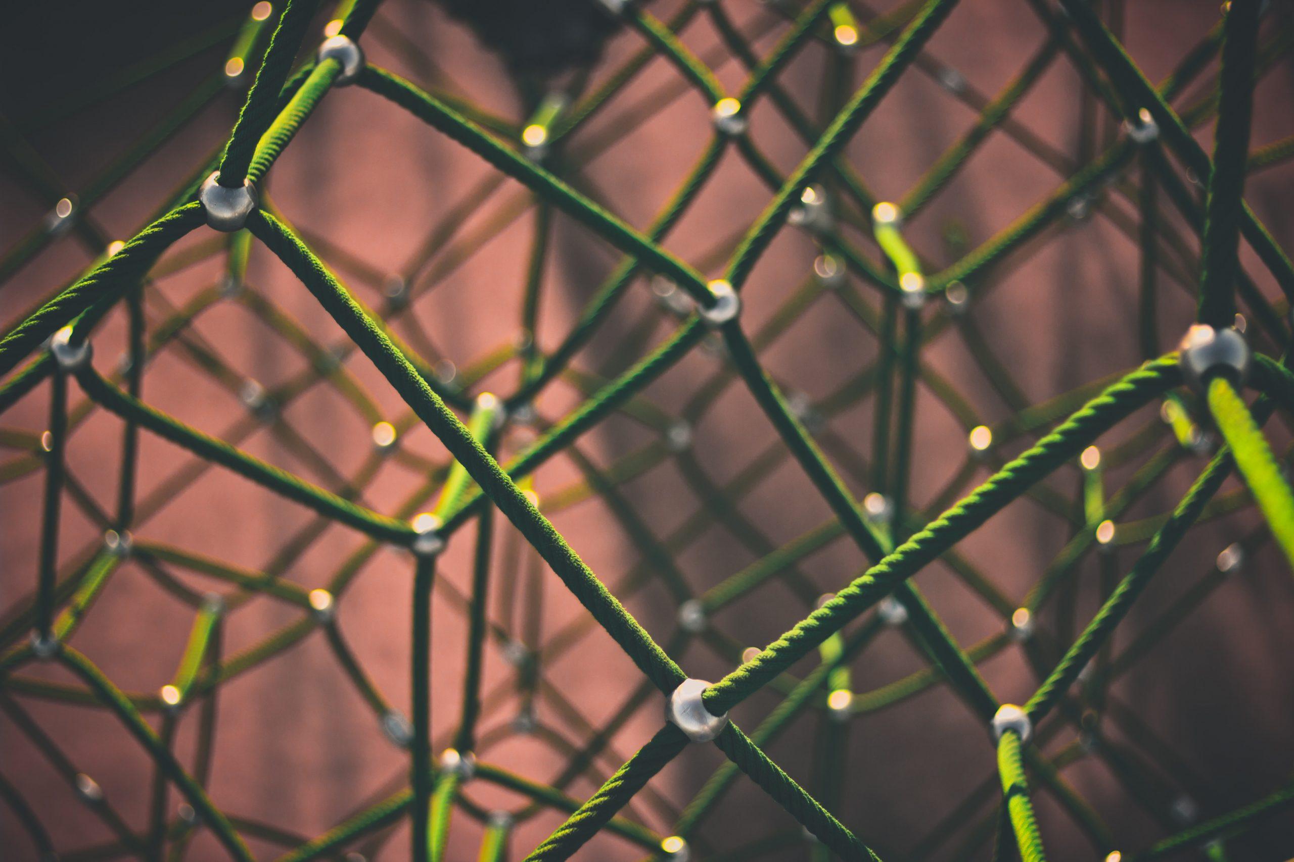 Tutto è connesso